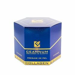 Ceannum colageno+elastina+vit c 10 amp bebibles
