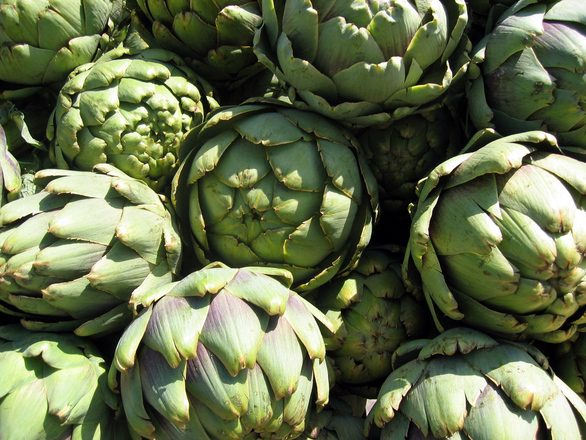 La alcachofa protege nuestro organismo, contiene infinidad de propiedades y es el alimento depurativo por excelencia.